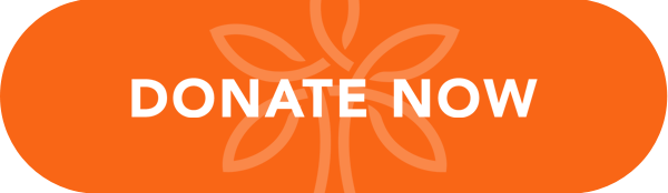 Donate Now button powered by donasity